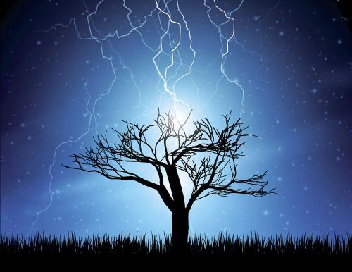 为什么雷击枣木被视为法器之王?