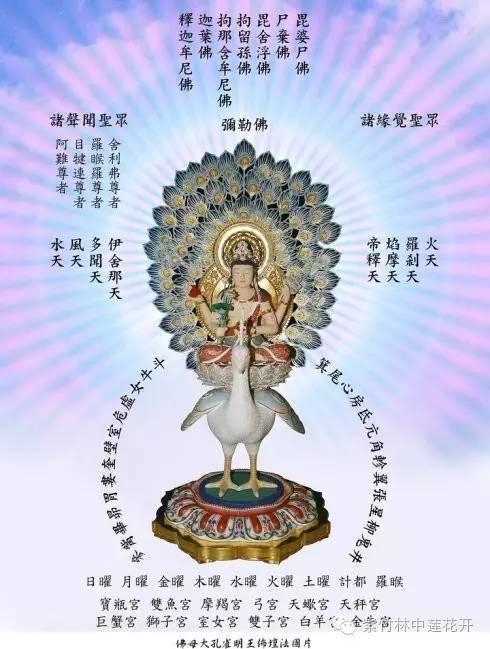 孔雀靈音——结界缚魔身印陀罗尼密意说和修持法